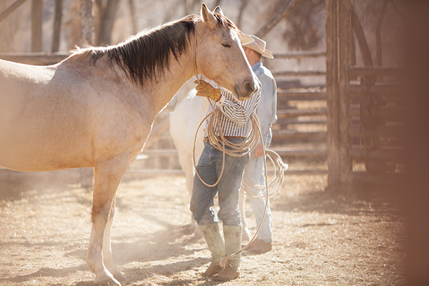 sarah-darling-where-cowboys-ride-wyoming-by-sara-kauss-photography-8086